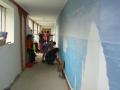Projet pédagogique à Siaugues 4